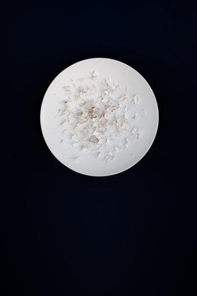 Louise-Frydman-Efflorescence-I-2020-George-V
