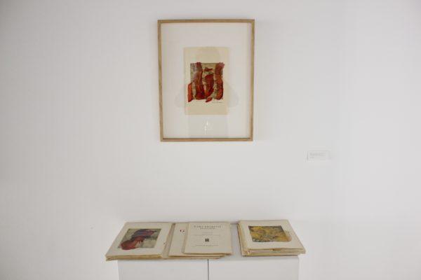 Jean-Claude-Wouters-Sanguines-d'après-livres-2013