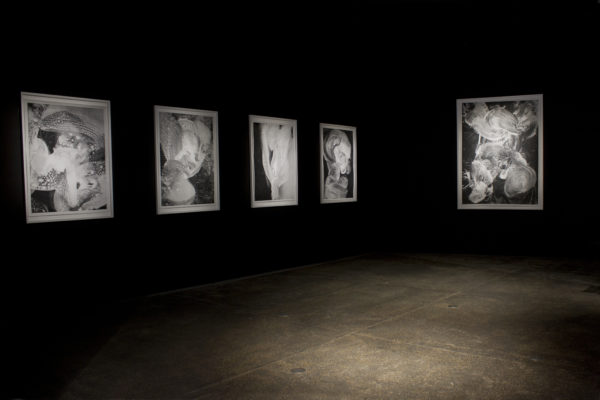 Jean-Claude-Wouters-Agneau-Mystique-Vue-D'exposition-2016-