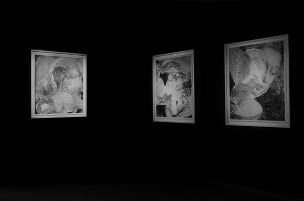 Jean-Claude-Wouters-Agneau-Mystique-2016-